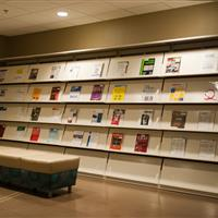 Library Display Shelves