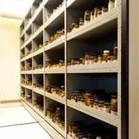 Compact Storage for Biology Collection