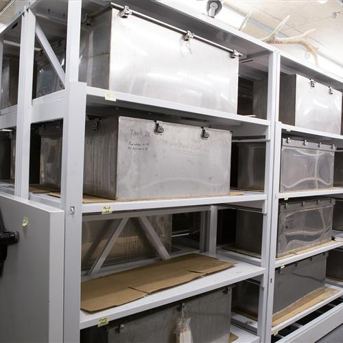 Large specimens stored in metal containers on Mechanical Assist Mobile Shelving