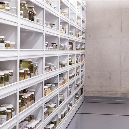 Mechanical Assist mobile shelving storing specimens preserved in liquid at California Academy of Sciences