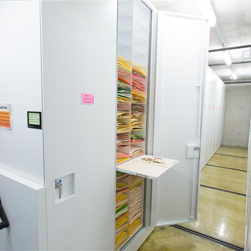Cabinet storing botany samples with pull out reference shelf to review materials at California Academy of Sciences