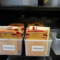 Evidence storage on metal shelving