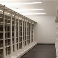 High-density mobile cantilever shelving