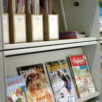 Magazine Display Shelves and Periodical Storage