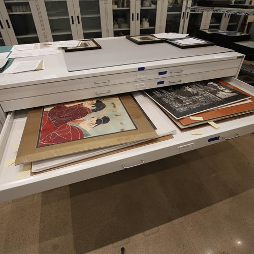 Archival flat file museum cabinets.JPG