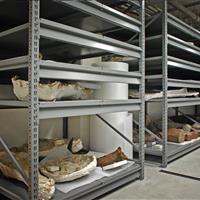 Raymond Alf Museum fossils on static shelving