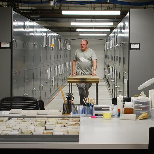 Raymond Alf Museum Paleontologist pushing work table through aisle of high density mobile system