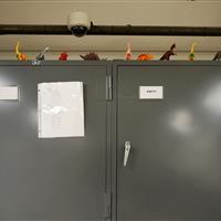 Locking cabinets at Raymond Alf Museum