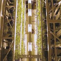 Heavy-duty compact mobile shelving storing vertical grow system