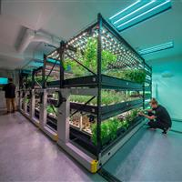 Save Space hydroponic indoor growing urban farm.jpg