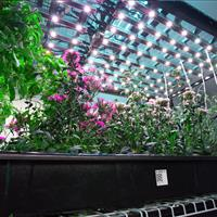 Indoor farm hydroponics moving shelving on ActivRAC mechanical assist.jpg