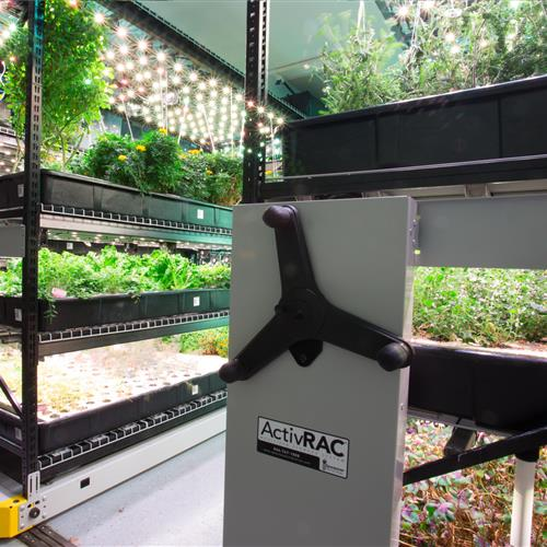 Farm One hydroponic herb shelves.jpg