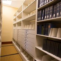 Bin dividers help organize archival collections