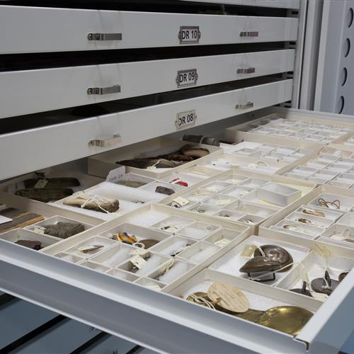 Museum cabinets to keep your artifacts organized and accessible