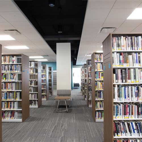 Cantilever static library shelving