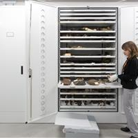 Cabinets fitted with slide-out trays provide protection