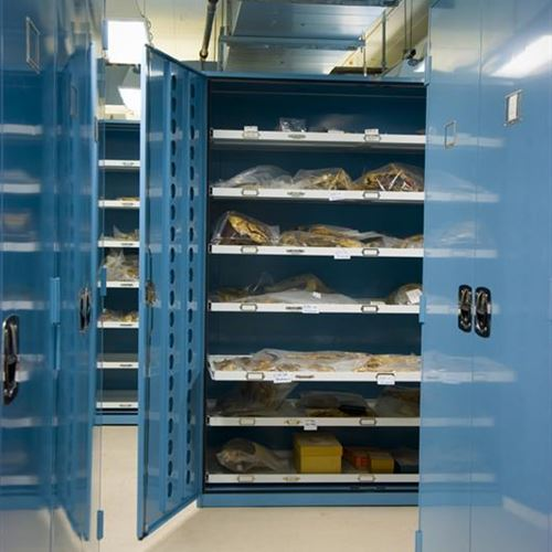 Static Shelving System Displays Some of Chicago Field Museum's Best