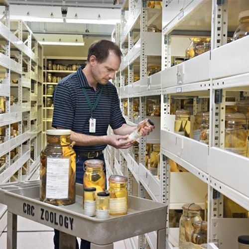 High Density Mobile Storage Holds up History at Chicago Field Museum