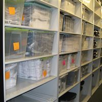 St. Louis Rams' Football Equipment Storage on Mobile Shelving