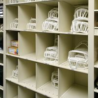 Football Equipment Storage on metal shelving