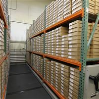 Industrial Mobile Racking to Store Large Fish Bone Collection