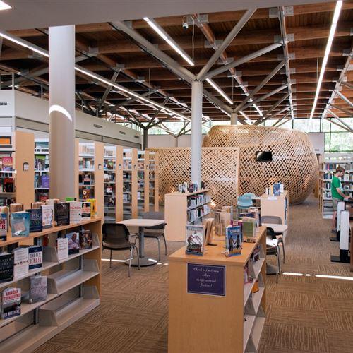 Library book shelving surrounding Unique Basket Structure