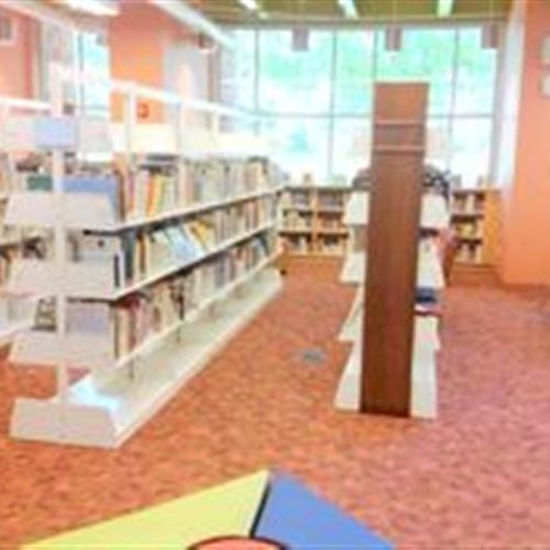 Library Shelving at Dover Public Library
